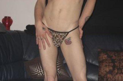 mein schwanz lutschen, ass sex